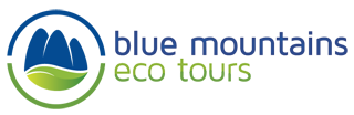 bluemtecotour