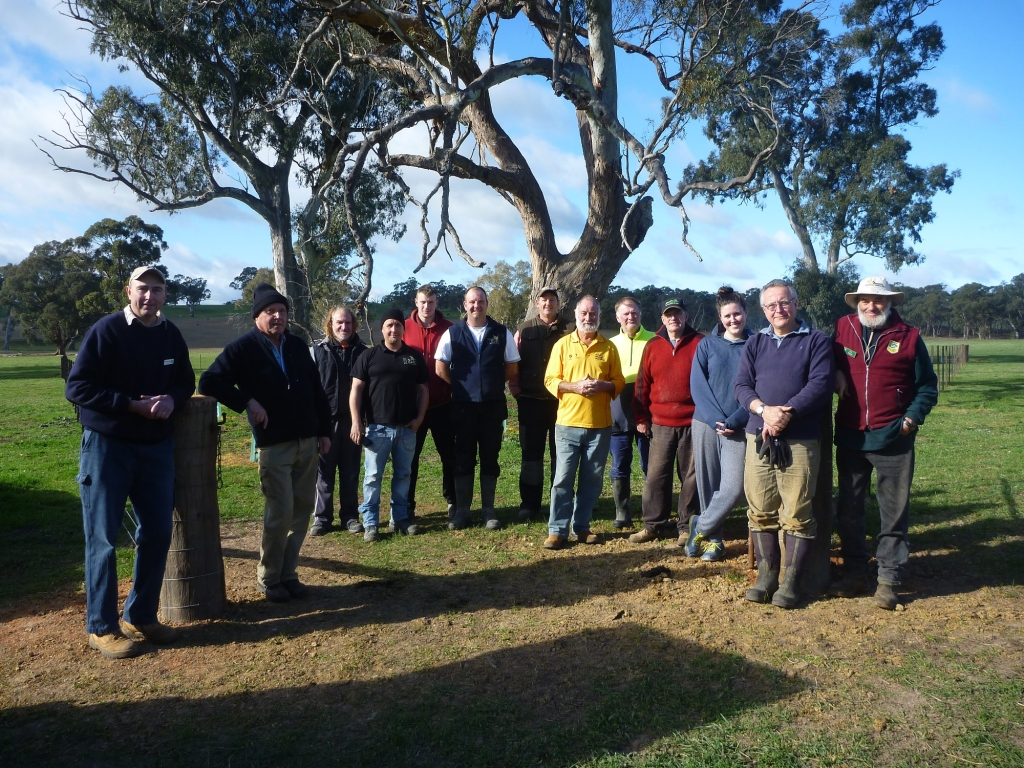 Robust group of tree planters.
