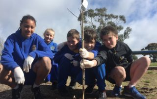 tree planting at sebastopol primary school