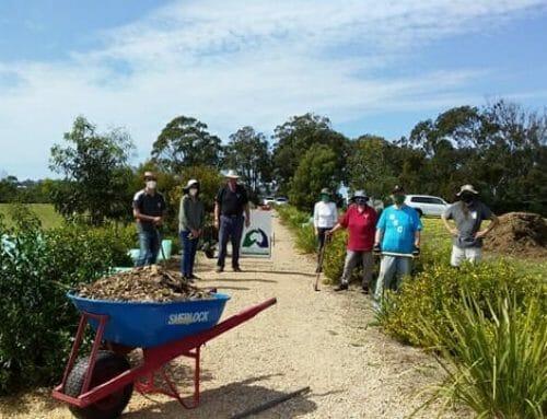 Biodiversity and Tambo Bluff, VIC.